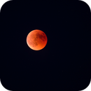 Red red moon,                                David