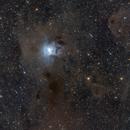 Iris Nebula NGC 7023 and Ghost Nebula vdB 141 or Sh2-136,                                Luca Fornaciari