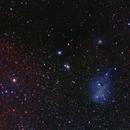 Camas Lilies Nebula,                                Ron