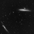 Full resolution test over NGC 4631, NGC 4656 (Canes Venatici),                                Antonio F. Sánchez