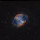Bi-Color Dumbbell,                                Kevin Morefield