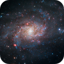Triangulum Galaxy (M33) - Something positive from the recent AB data loss,                                Gary Lopez