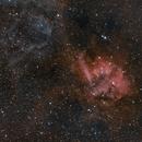 Lion Nebula (sh2-132),                                whoseideawasthis