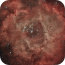 NGC2244 Rosette Nebula,                                Marco_Bosk