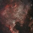 YANAN (Yet Another North America Nebula),                                Sodonaut