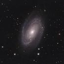 M81,                                Craig Kensler
