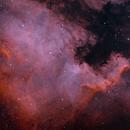 NGC 7000 (The North America Nebula) HOO,                                NeedMoreCoffee