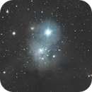 IC 348 and Barnard 3,                                Benny Colyn