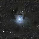 Iris nebula in LRGB,                                Trevor Nicholls