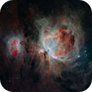 Orion Nebula,                                Roger Nichol