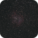 Rosette NGC 2244,                                astropical