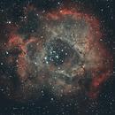 SH2-275 - Rosette Nebula,                                n0de
