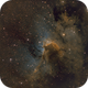 LBN 529 SHO/Hubble,                                Paul Muskee