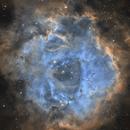 Rosette Nebula NGC 2237,                                Audrius