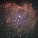 NGC 2174 Monkey Nebula 29-01-2021,                                Wagner