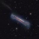NGC 3628 the Hamburger Galaxy in Leo,                                Mark Wetzel