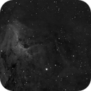 Pelican Nebula in Ha,                                NewfieStargazer