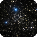 NGC 1245,                                Colin McGill