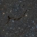 B150 Seahorse Nebula,                                Dave Weixelman