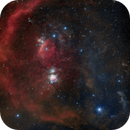Orion,                                Łukasz Żak