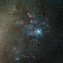NGC 2070 Widefield,                                GoldfieldAstro