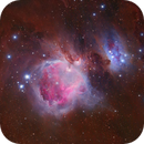 The Great Orion Nebula & Running Man,                                Trần Hạ