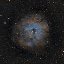 SH2-170 - A Minor Rosette,                                Drew Lanphere