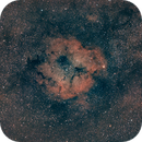 IC 1396 and Space Dust - Widefield,                                APK