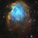 Monkey Head Nebula,                                anas almajed