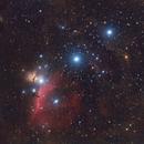 Orion's Belt,                                Patryk