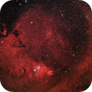 Cone Nebula with Christmas Tree Cluster and Surroundings (Theli v1 L=Red,RGB),                                Martin Junius