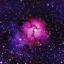 The Trifid Nebula,                                David Redwine