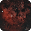 NGC 7822 BiColor with RGB Stars,                                pmneo