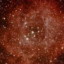 Rosette Nebula,                                Gustavo Sánchez