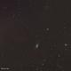 NGC 2903 and companion,                                Jan Borms