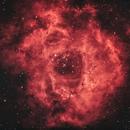 Rosette Nebula,                                Carlos Tejeda