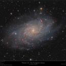 Messier 33 - The Triangulum Galaxy,                                Frank Schmitz