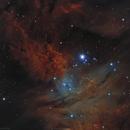 Fur Fox Nebula Sh2-273,                                Sylvain Lefebvre