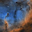 IC1396 in SHO,                                Michael