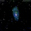 ngc6118 galassia nel serpente                                                              distanza 83 milioni A.L.,                                Carlo Colombo