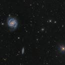 Messier 100 and NGC 4312,                                Toshiya Arai