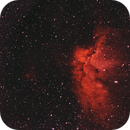 NGC 7380, The Wizard Nebula in Cepheus,                                Steve Balke