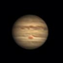 Jupiter,                                Friesenjung