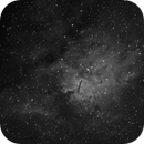 NGC 6823 in Vulpecula,                                rigel123