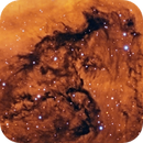 A Horse in Cygnus (IC1318b),                                sydney