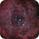 NGC2237 LRGB,                                Benoit Gagnon