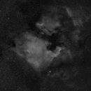 NGC7000 Widefield,                                Matthias Steiner