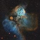 NGC 2467 in SHO,                                Ignacio Diaz Bobillo