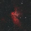 Wizard Nebula,                                xtal00