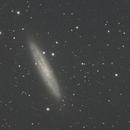 Sculptor Galaxy and NGC288,                                Brendan Studds